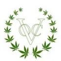 Ontmoet de Piratenpartij op Cannabis Bevrijdingsdag
