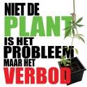 Legaliseren cannabis is een baanbrekende hervorming