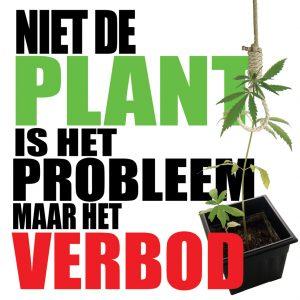 [Niet de plant is het probleem, maar het verbod ervan]